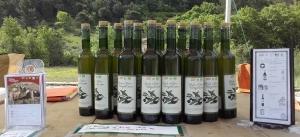 plusieurs bouteilles d'huile d'olive sur une table
